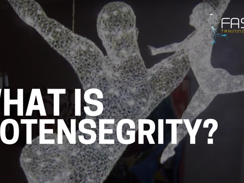 What is Biotensegrity?