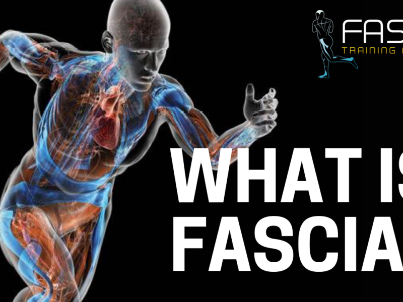 What is Fascia?