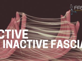 Active vs. Inactive Fascia