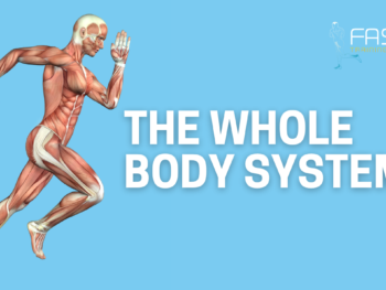 The Whole Body System