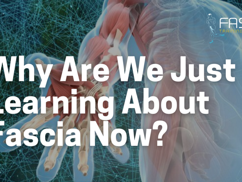 Why are We Just Learning About Fascia Now?